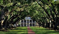 Zu Gast in Louisiana – Historie, Plantagen & Blues
