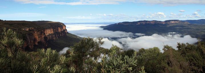 Blue Mountains im Nebel