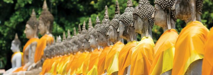 Ayutthaya Tempelruinen