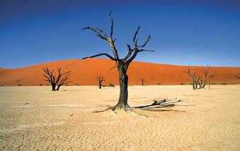 Sossusvlei Landschaft Namib Wüste Namibia