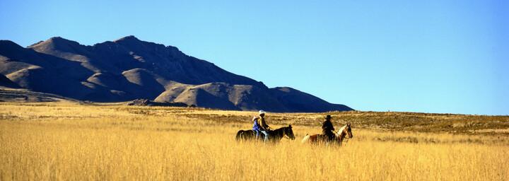 Cowboys Antelope Island