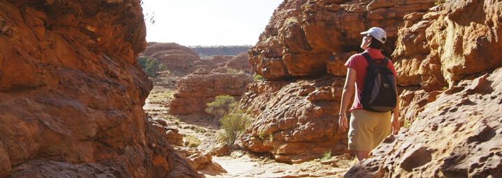 Kings Canyon Wanderer
