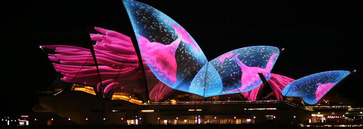 Sydney Opera House während des Vivid Festivals