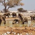 Klassisches Namibia