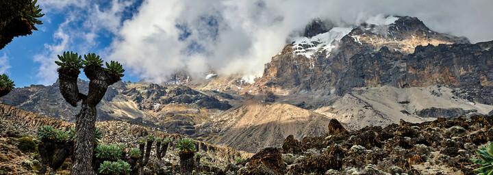 Landschaftsbild Kilimanjaro