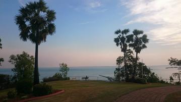 Darwins Küste