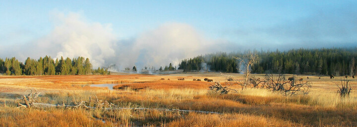 Landschaft im Yellowstone Nationalpark