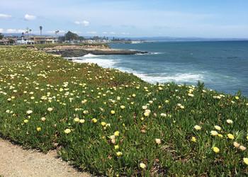 Reisebericht Kalifornien - Santa Cruz