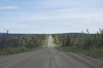 Yukon Reisebericht: Taylor Highway - Von Tok nach Dawson City