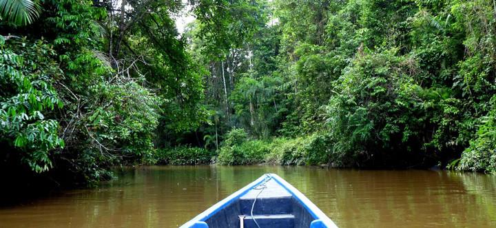 Ecuador Reisebericht - Fluss im Naturreservat Cuyabeno