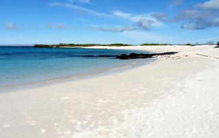 Galápagos Reisebericht - Bachas Beach