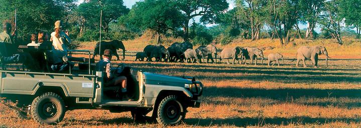 Game drive mit Elefanten Sambia