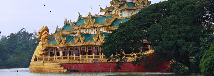 Burmesische Königsbarke