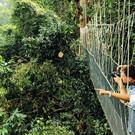 Ein Tag im Regenwald